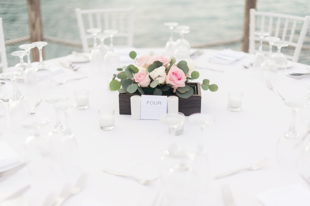 destination table scape